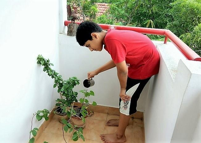 5 Indoor Plants that Your Child Can Grow