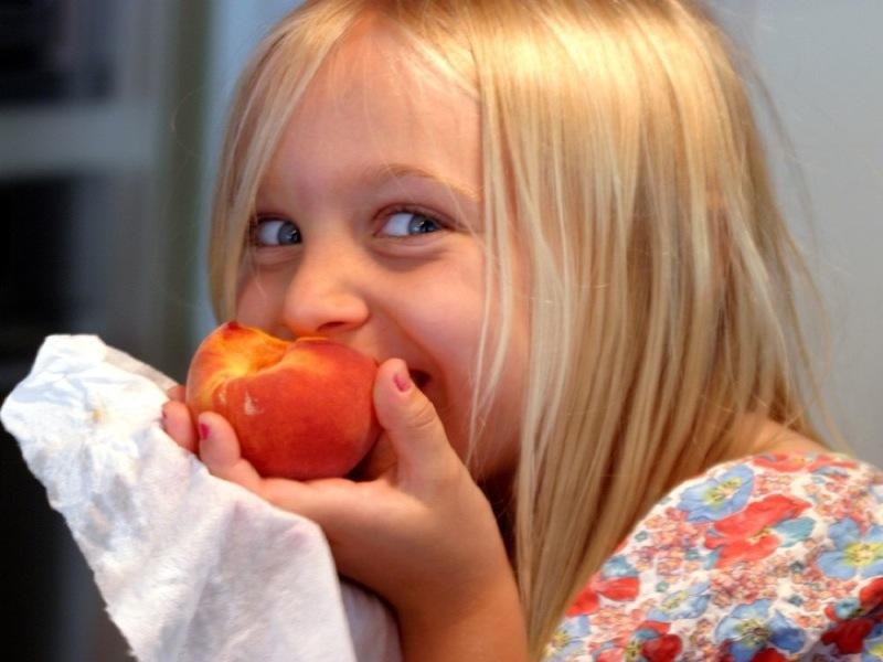 10 Foods Your Child Must Have Every Day