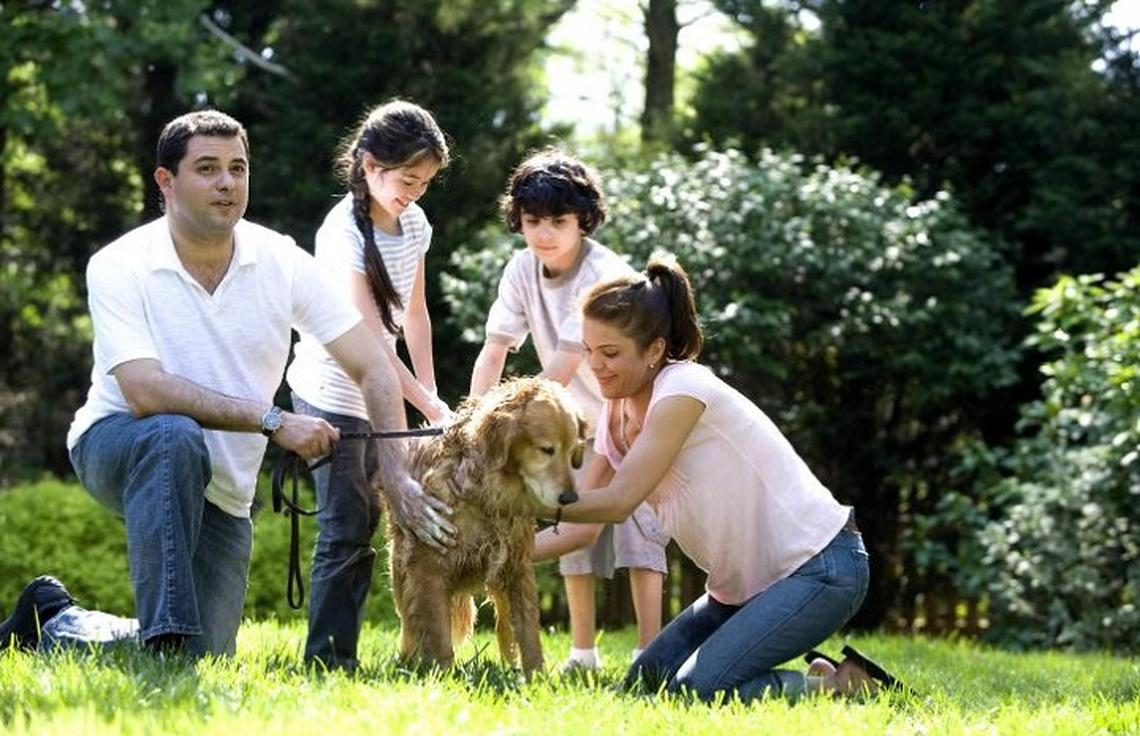 Why Pets are Good for Kids: Myths vs Facts