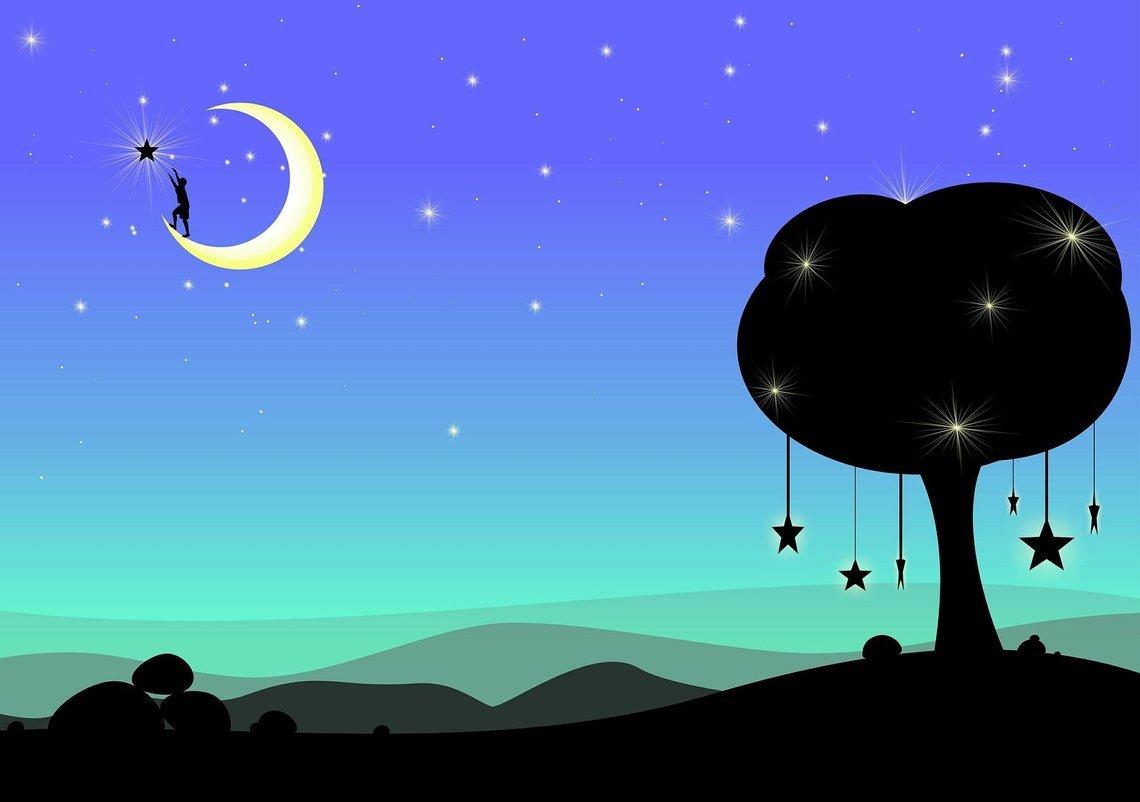 Moonlight night and Paruppu Saadam