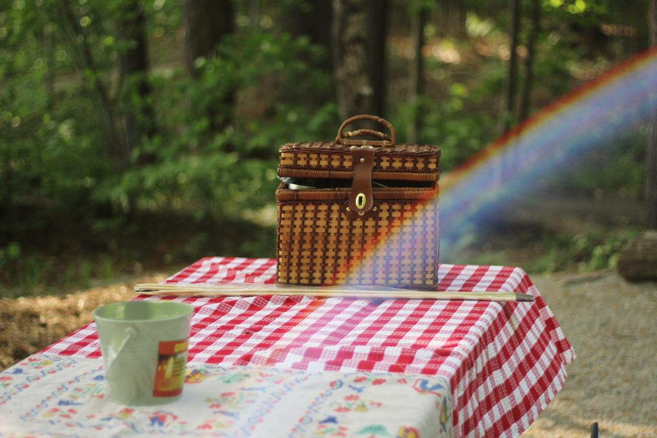 Let's Go on a Picnic