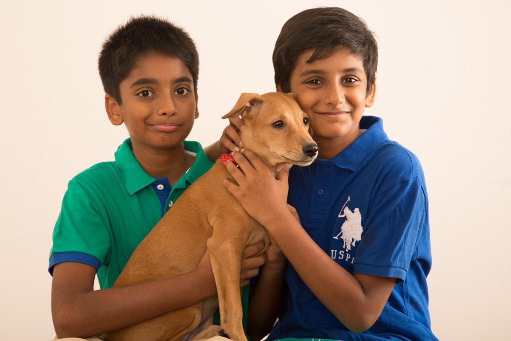 Four Things To Keep In Mind When Buying A Pet For Your Child