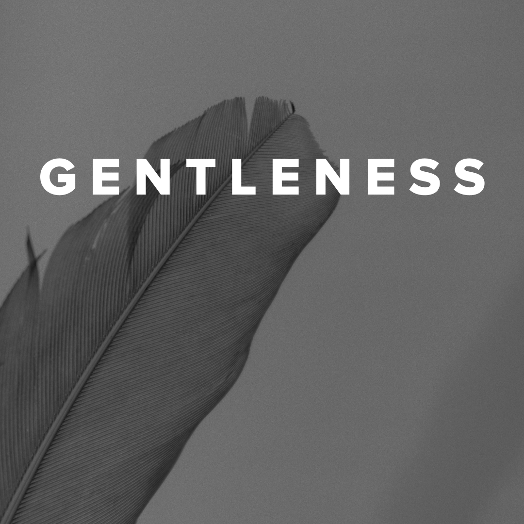 Worship Songs about Gentleness