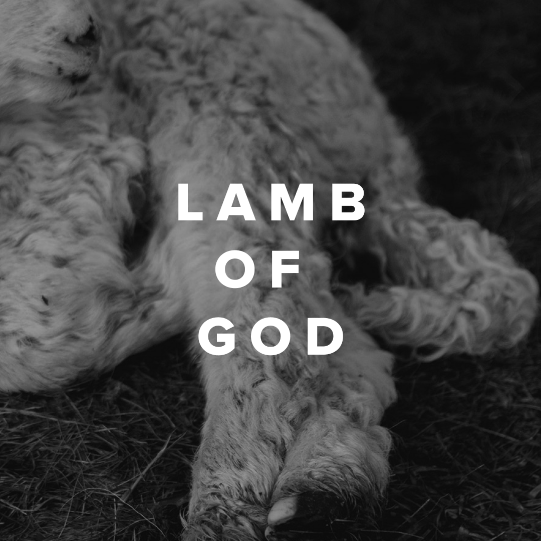 Worship Songs about the Lamb of God
