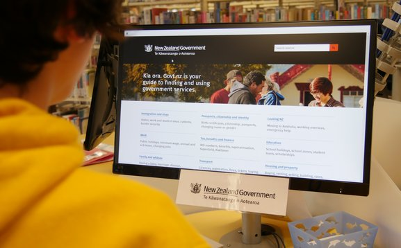 Young man  using the library computer to look for Government information