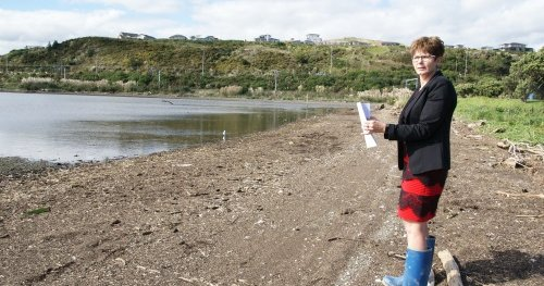 Councillor Anita Baker at the site of a major Porirua Harbour restoration project.
