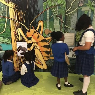 School visit to the children's gallery