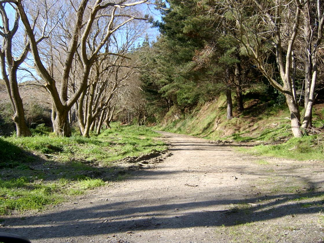 Bothamley park aug 2005