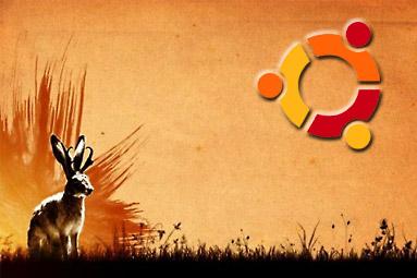 Linux Ubuntu 9.04 - návod pro začátečníky
