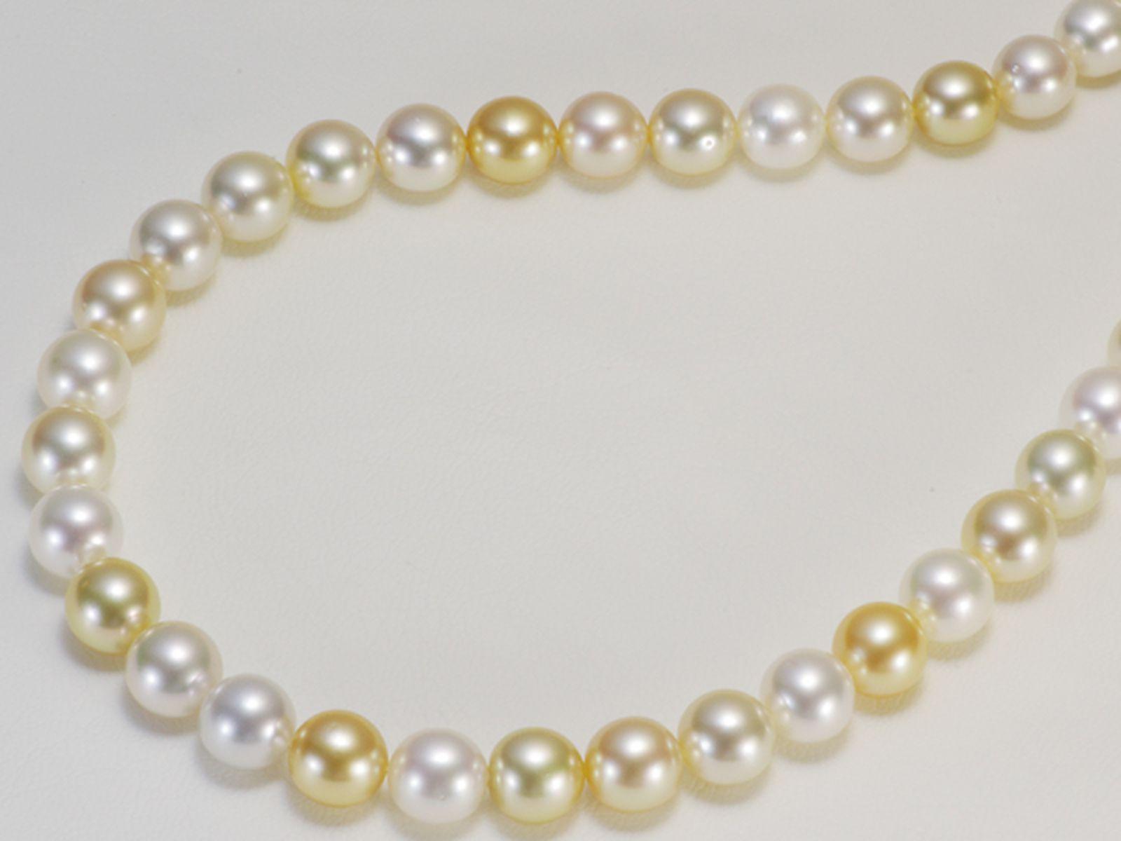 南洋白蝶真珠フォーマルネックレス 約9.0-9.9mmの写真