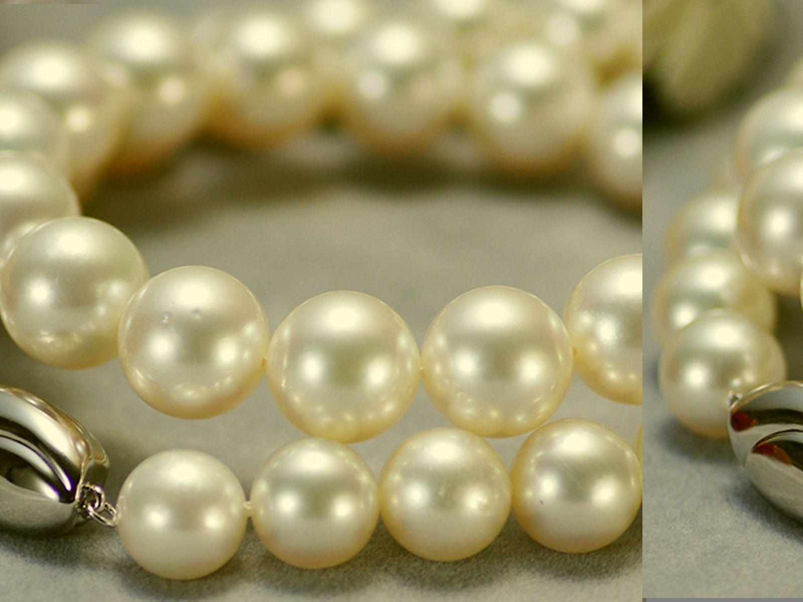 南洋白蝶真珠フォーマルネックレス 約10.0-11.9mmの写真