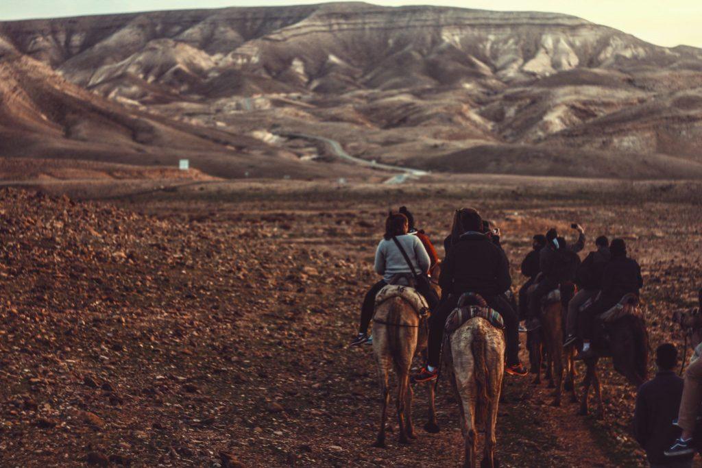 L'équitation peut être à l'origine de maux de dos