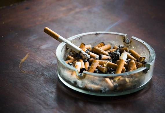bad pet sitter cigarette ash tray shutterstock