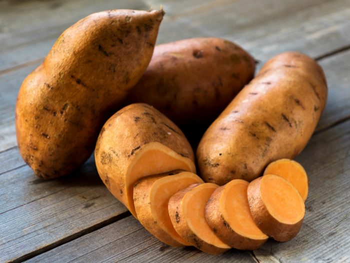 sweet potato good for dogs