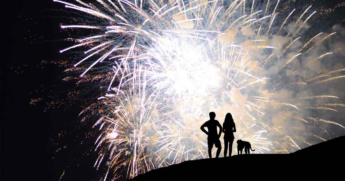 how-to-calm-a-dog-during-fireworks