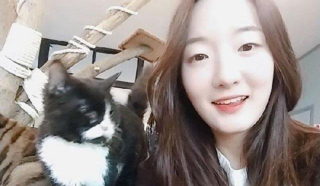 Pet Boarding Pyeongtaek