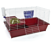 Cages and Accessories