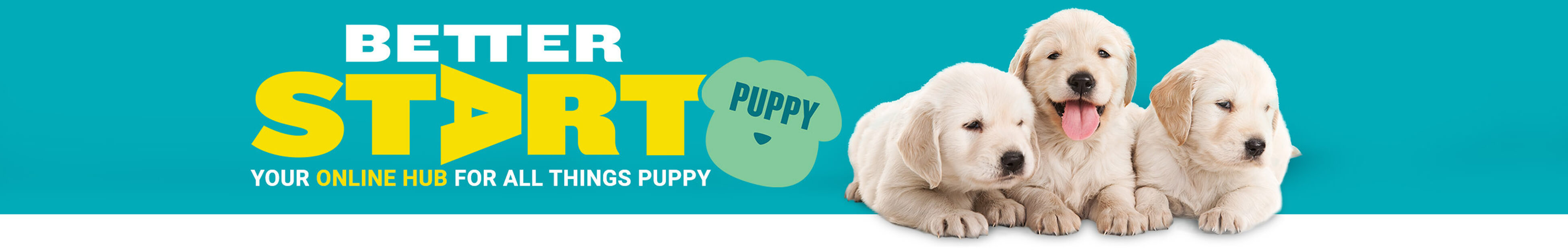 Better Start Puppy - Your online hub for all things puppy