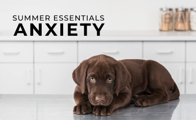 Shop Anxiety Products