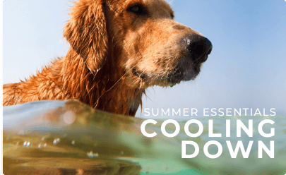 Shop Cooling Down Products