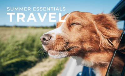 Shop Travel Products