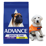 Advance Advance Adult Dental Large Giant Breed Dry Dog Food Chicken 15kg