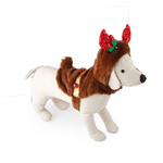 All For Paws Afp Christmas Reindeer Costume