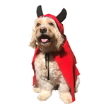 All For Paws Afp Halloween Devil Cloak