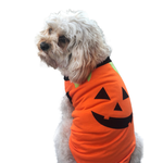 All For Paws Afp Halloween T Shirt