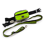 All For Paws Afp Outdoor Dog Jogging Leash Green