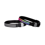 Doglite Doglite Double Trouble Led Collars Northern Lite
