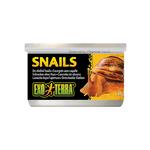 Exo Terra Exo Terra Snails Unshelled