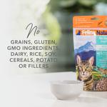 feline-natural-lamb-and-salmon-freeze-dried-cat-food