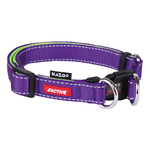 Kazoo Kazoo Collar Active Adjustable Purple