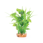 Kazoo Kazoo Combination Plant Thin Leaf With Spot