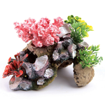 Kazoo Kazoo Coral With Rock And Plants