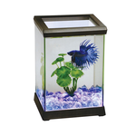 Ocean Free Ocean Free Betta Space Illuminated Home Black