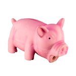 Pawise Pawise Latex Pig