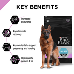 pro-plan-performance-all-size-all-life-stages-dry-dog-food