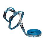 Rogz Rogz Reflectocat Harness Lead Blue Fish