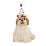 Rubies Deerfield Rubies Deerfield Dog Birthday Hat Boy