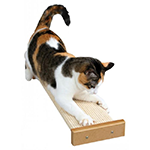 SmartCat Smartcat Combination Scratcher