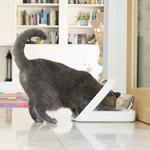 sure-feed-microchip-pet-feeder