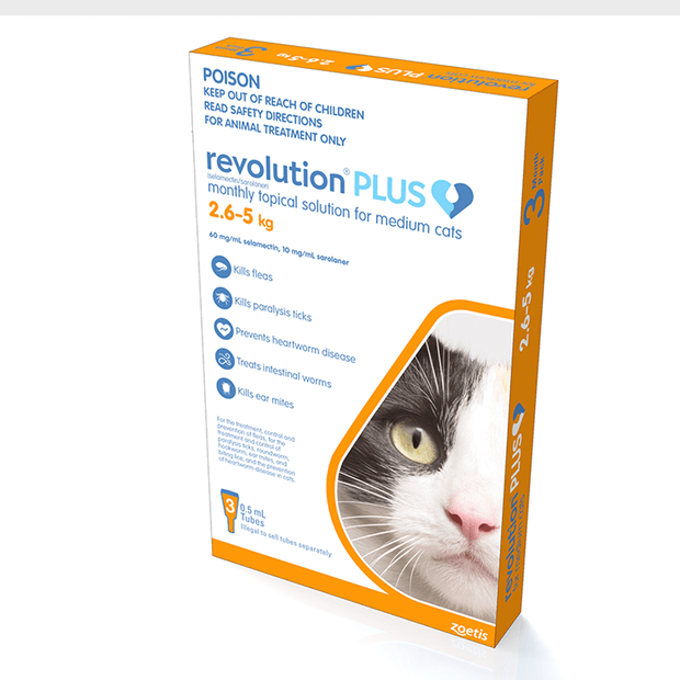 What Is The Best Flea And Tick Treatment Pet Circle