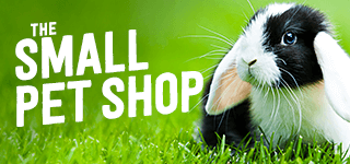 the small-pet shop