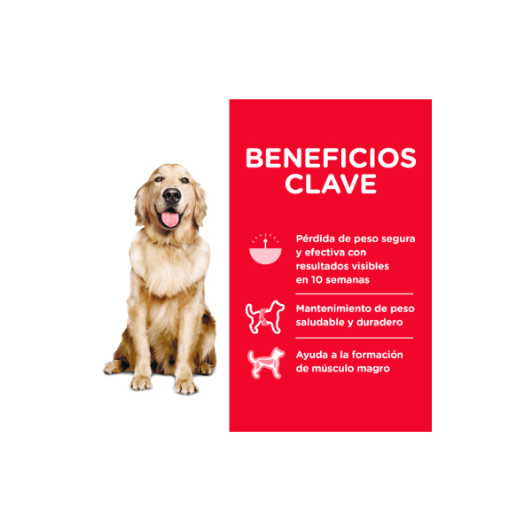 Hills Canino Adulto Perfect Weight