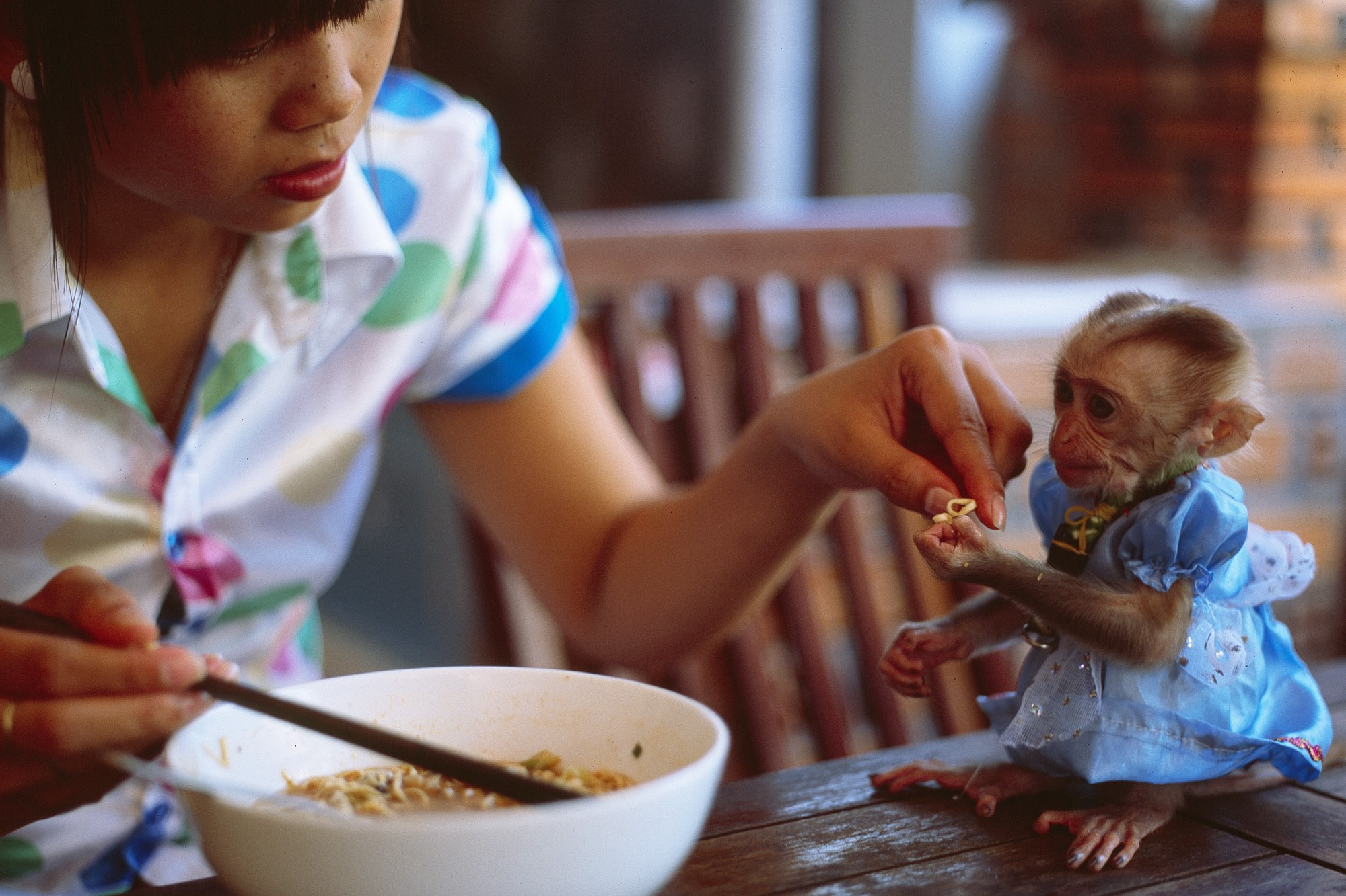 5 untraditional ways to afford adoption
