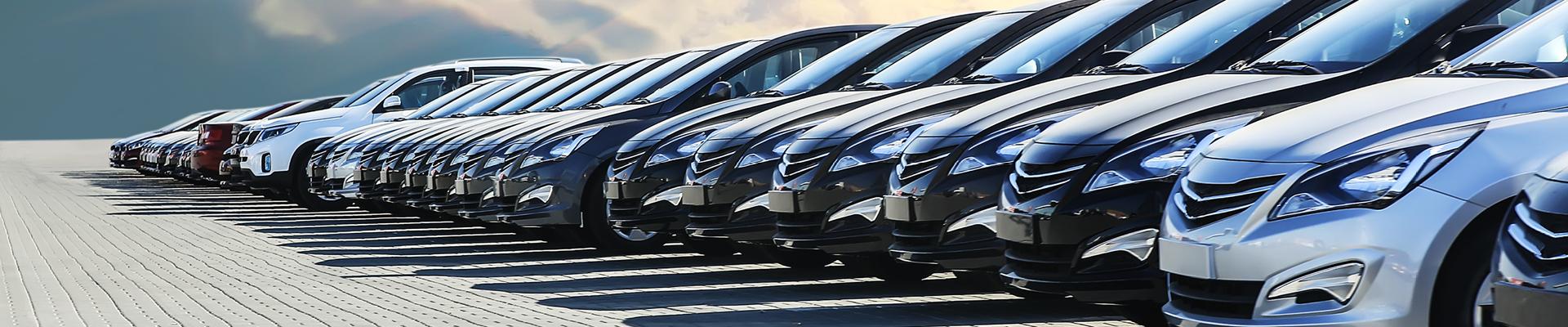 Naples Premium Collision Center – Rental Car