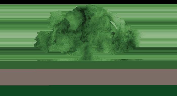 Presbyterian Homes of Georgia