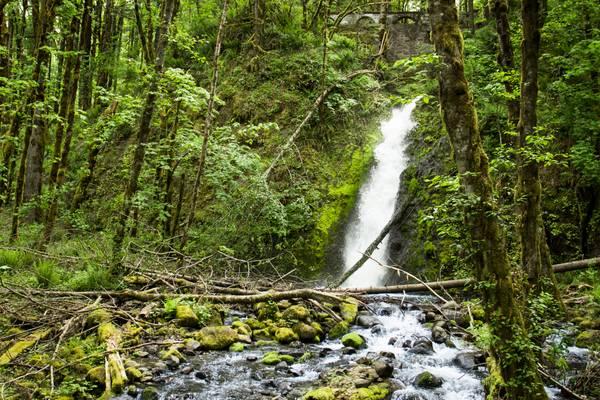Ruckel Creek Waterfall, Oregon
